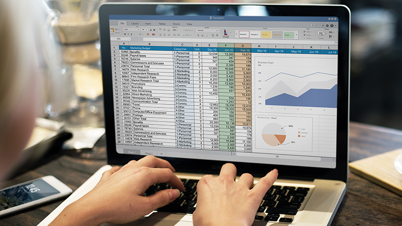 person working in an Excel table on a laptop